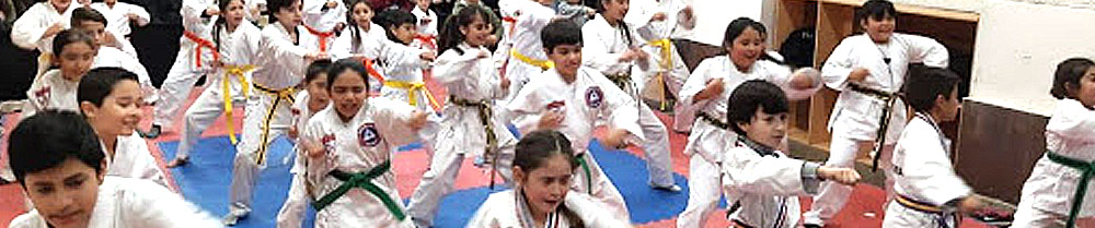 Reserva tu clase de Taekwondo por Zoom para niños